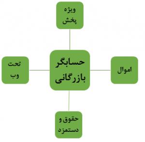 ارتباط با سایر سیستم ها در شایگان